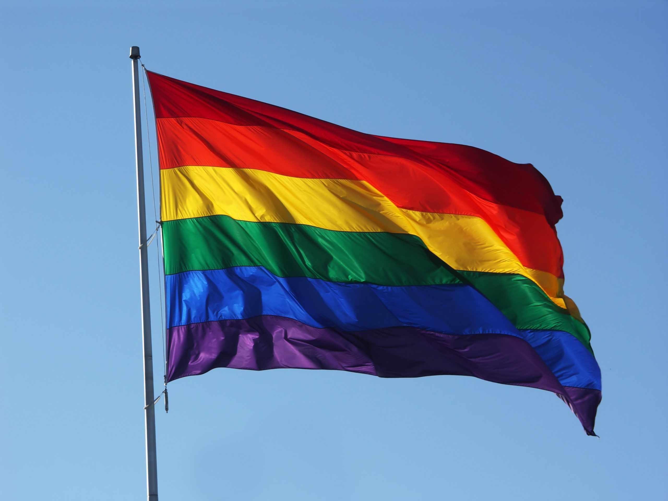Иностранные дипломаты в Международный день борьбы с гомофобией