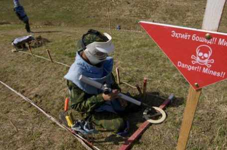 С 2009 года в Таджикистане было уничтожено более 16 000 противопехотных мин.