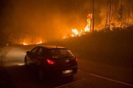 Иран заинтересован в сотрудничестве с Туркменистаном в борьбе с лесными пожарами