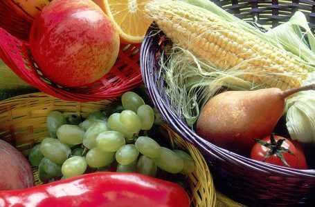 Экспорт овощей и фруктов увеличится Туркменистаном