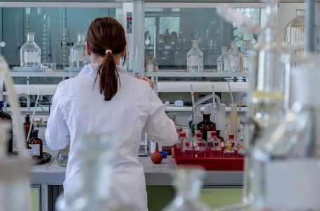 ФАО поддерживает Таджикистан в создании комплексной системы мониторинга ГМО