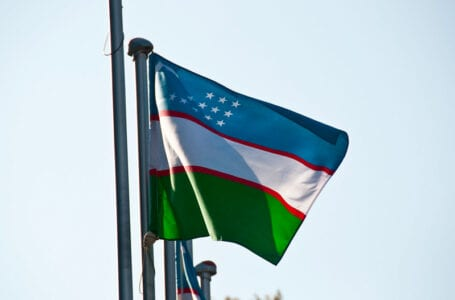 Узбекистан присоединится к TurkPA