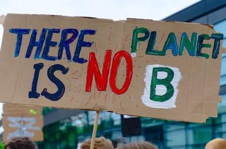 Грузия присоединяется к глобальной климатической забастовке
