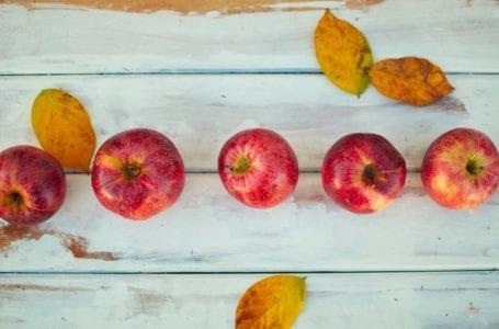 Как фрукты могут стимулировать экономическое развитие в Центральной Азии