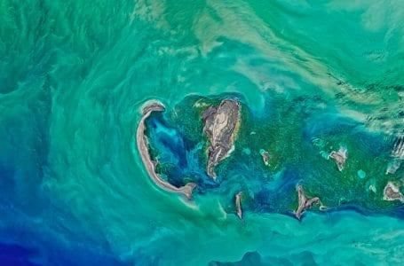 ОБСЕ реализует проект по развитию зеленых портов Каспийского моря в Туркменистане