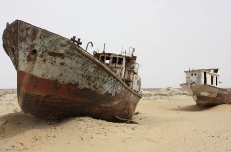 Добыча Артемии в Аральском море: мелкий ракообразный, крупный вопрос