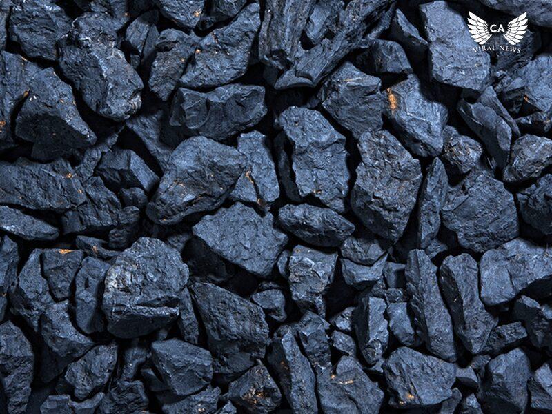 Женщинам Узбекистана предложили дешевый уголь в обмен на прекращение протестной акции
