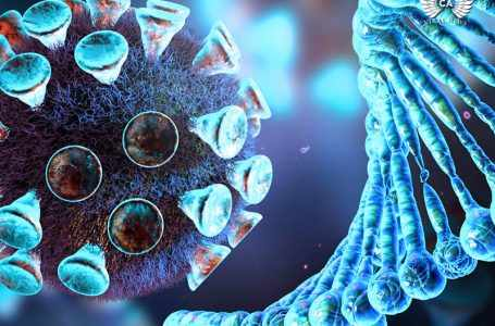 В Армении продолжают обновлять статистику по коронавирусу