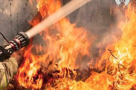 В Ташкенте произошел крупный пожар. Есть жертвы