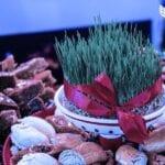 Некоторые казахстанцы озадачены растратой бюджета на празднование Новруза