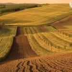 Иностранцам запретят покупать и арендовать землю в Казахстане?