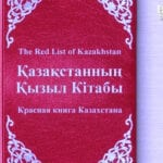 Обеспечит ли новая конституция Кыргызстана уверенность в завтрашнем дне?