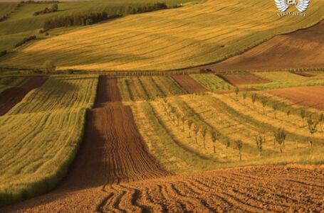 В министерстве сельского хозяйства Казахстана кадровые перестановки