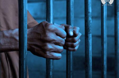 Антиправительственный оппозиционный активист досрочно освобожден?